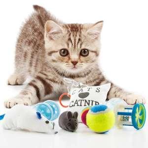 8 jouets pour chat : 1 coussin, 3 balles, 2 souris et 2 grelots
