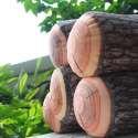 Oreiller tronc de bois coussin arbre buche
