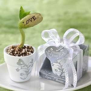 Plante haricot message LOVE en petit pot sur sa feuille