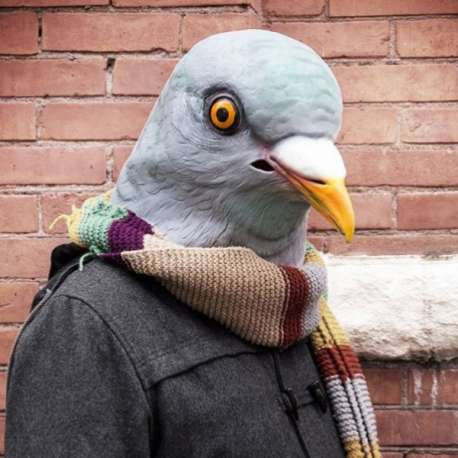 Masque pigeon en latex