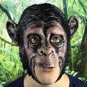 Deguismeent en forme de Masque de singe en latex - accessoires article de fete