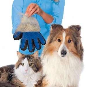 Gant de massage et brossage de poils pour chien et chat soins animal