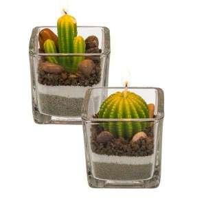 2 Bougies en forme de cactus pots décoratifs en verre