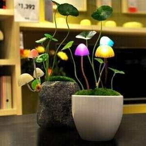 Veilleuse champignons à LED  lumière avatar 3 champignons