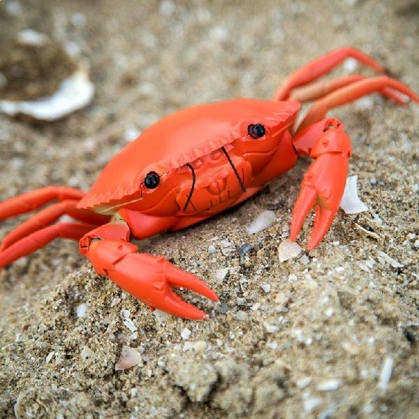 Crabe t l guid orange ebay - Pile telecommande orange ...